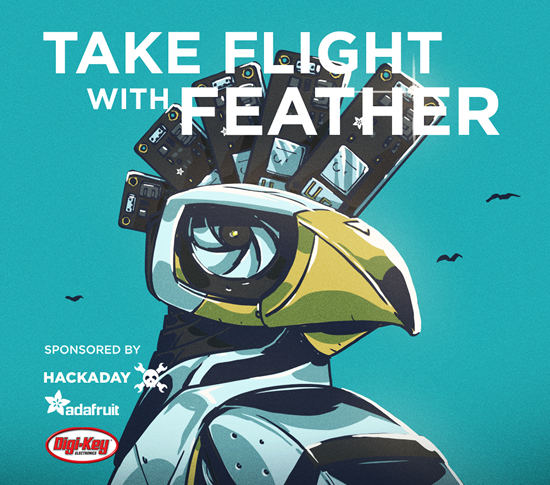 Take Flight with Feather