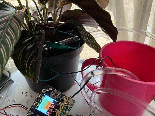 Plant Moisture Sensor