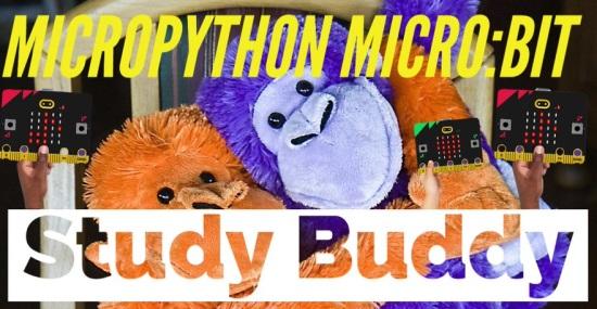 MicroPython micro:bit Custom Python Module