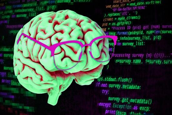 Brain interpretation of code