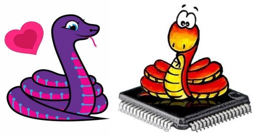 MicroPython & CircuitPython