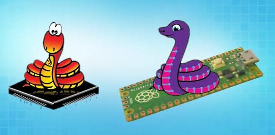CircuitPython Libraries Slither Into MicroPython on the Raspberry Pi Pico