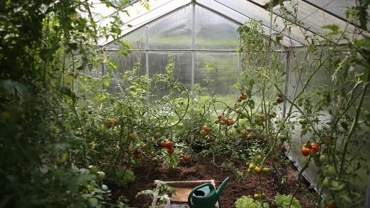 Monitor a greenhouse with CircuitPython
